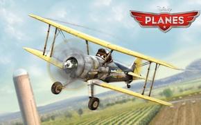 Wallpaper cartoon, wings, adventure, rally, wings, Walt Disney, animation, action, Walt Disney, adventure, air race, air ...