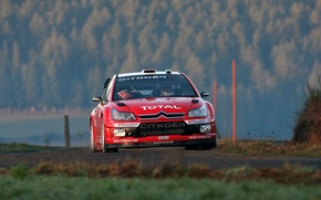 Picture Red, Auto, Racer, Citroen, Red, Lights, Logo, WRC, Rally, Rally