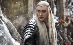 Picture Fantasy, Winter, Snow, Wallpaper, Blonde, The Hobbit, Elf, Man, Movie, Film, 2014, Hair, Adventure, Armor, …