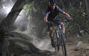 Picture forest, sport, athlete, nature, man, mountain bike, cyclist