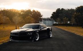 Picture Chevrolet, Muscle, Camaro, Car, Front, Black, Autumn, Matte, Stance, ZL1