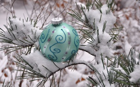 Picture winter, snow, needles, new year, ball, Christmas, decoration, pine