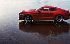 Picture Ford, Water, Reflection, View, Mustang GT, 2015
