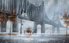 Picture trees, rain, street, umbrella, lights, pair, two, bench, Jeff Rowland