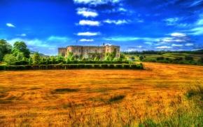 Wallpaper field, Wales, treatment, trees, the bushes, Chirk Castle, castle, UK, design