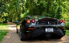 Picture trees, shadow, ferrari, Ferrari, black, f430, back, scuderia, Cherny, F430 Scuderia