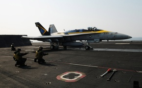 Picture the plane, f/a 18, hornet