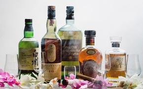 Picture cigar, whiskey, varieties, Hibiki, Cardhu, Hakushu, Singleton, Lagavulin