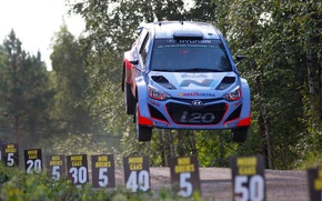 Picture grass, trees, jump, label, rally, rally, wrc, hyundai, i20, 2014, Hyundai