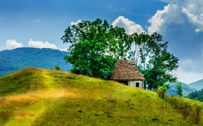 Picture forest, trees, mountains, house, trail, hill, abandoned, Romania