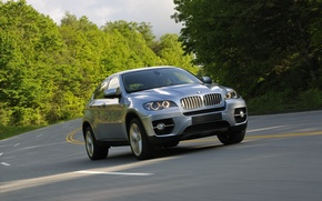 Picture road, trees, BMW, jeep, BMW, the front, Икс6