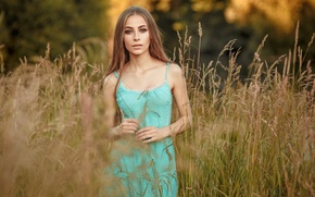 Wallpaper tenderness, look, gesture, face, handle, mood, field, girl, long-haired, Dasha, pretty, dress, portrait, sexy, cute, ...