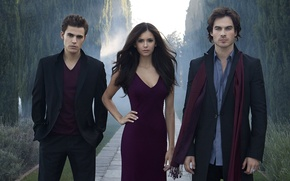 Picture the vampire diaries, stefan, damon, the vampire diaries, elena