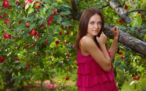 Picture apples, brunette, Apple
