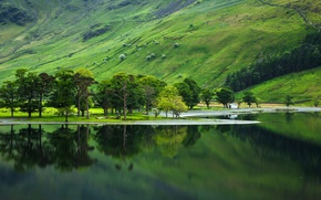 Wallpaper lake, trees, house, slope, mountains