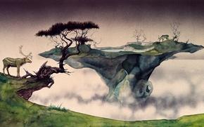Picture nature, fog, island, deer