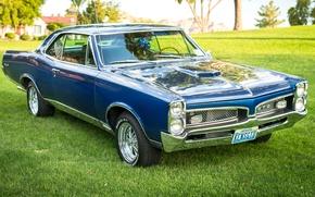 Wallpaper GTO, classic, Pontiac, style