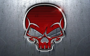 Picture metal, Skull, metal, sake, red