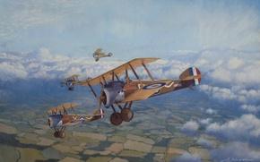 Picture Aviation, Steve Heyen, Sopwith, Camel