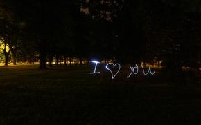 Picture love, night, nature