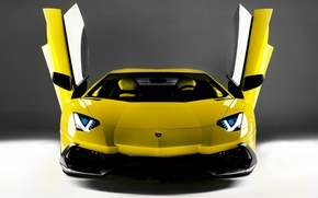 Picture Lamborghini, door, supercar, the front, open, LP700-4, Aventador, 50 Anniversario Edition
