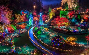 Picture night, lights, Park, Canada, New year, Canada, garland, night, New Year, Holidays, garland, Gardens, Butchart