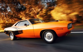 Picture in motion, Plymouth, muscle car, Plymouth cuda