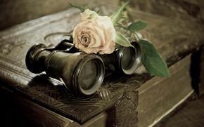 Picture flower, rose, binoculars, book
