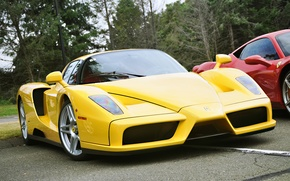 Wallpaper color, yellow, Ferrari, Enzo