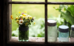 Picture flowers, window, banks