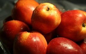 Wallpaper water, drops, macro, apples, food, red, fruit, delicious, useful