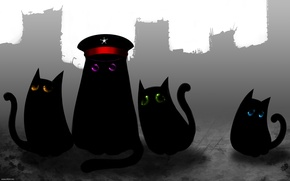 Picture Kittens, Captain, Romantically Apocalyptic, Sniper, Pilot, Romance Of The Apocalypse, Engineer