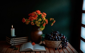 Wallpaper still life, books, candle, bouquet, A guiding light, grapes