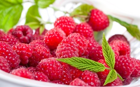 Picture leaves, berries, raspberry, plate