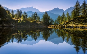 Picture forest, reflection, mountains, nature, lake