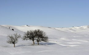 Picture the sky, snow, trees, hills
