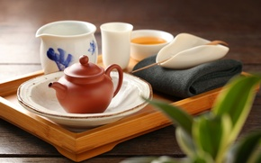 Picture tea, kettle, still life