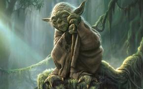 Picture Star Wars, Iodine, Yoda, Jedi, Master