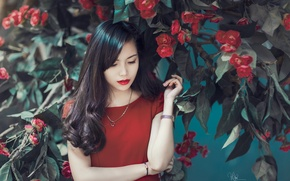 Picture flowers, hands, Asian, red