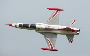 Wallpaper aviation, show, F-5, NF-5АБ, Canadair