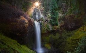 Picture forest, the sun, nature, waterfall, USA, Washington, Falls Creek Falls, Falls Creek, Gifford Pinchot National ...