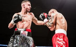 Picture sport, Boxing, men