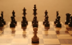 Picture field, one, chess, warrior