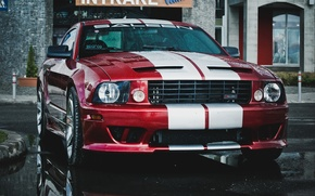 Picture red, rain, Mustang, red, white, Ford, rain, Ford mustang, saleen