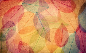 Wallpaper autumn, abstract, background, leaves, autumn, leaves, colorful, transparent
