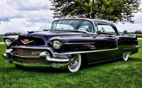 Picture the sky, tree, Cadillac, Coupe, the front, Cadillac, 1956, Sixty-Two, City