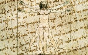 Picture style, background, figure, vector, characters, sketch, artist, texture, canvas, the manuscript, Vitruvian man, Leonardo da ...