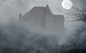 Picture grass, fog, house, tree, the moon, the darkness, Windows, broken
