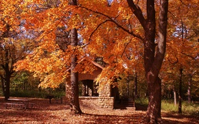 Picture house, trees, nature, park, autumn, leaves, fall