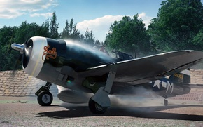 Picture art, Thunderbolt, UNITED STATES AIR FORCE, fighter-bomber, P-47, sally, Republic